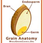 схема цельного зерна в лучших макаронах